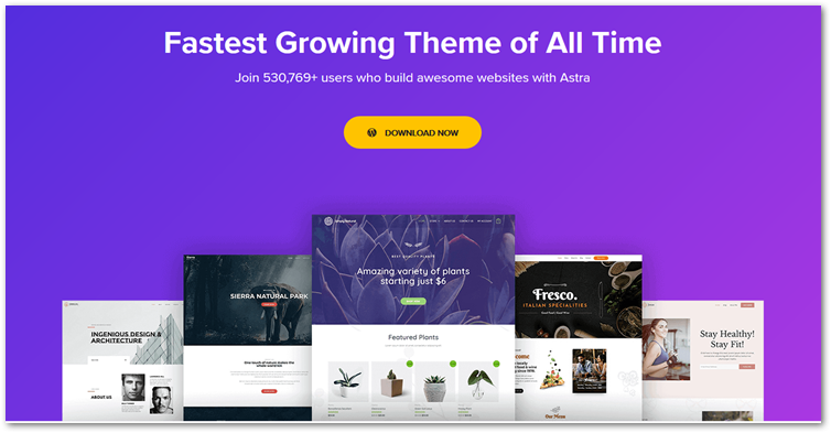 Astra WordPress Theme home