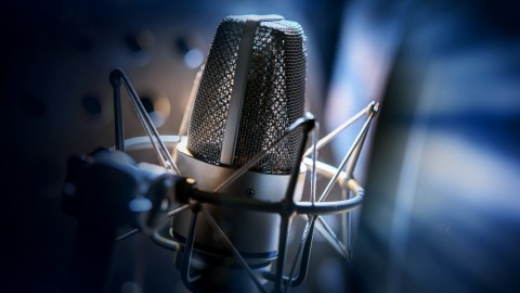 Be a Voice actor by Laci Morgan course on Udemy